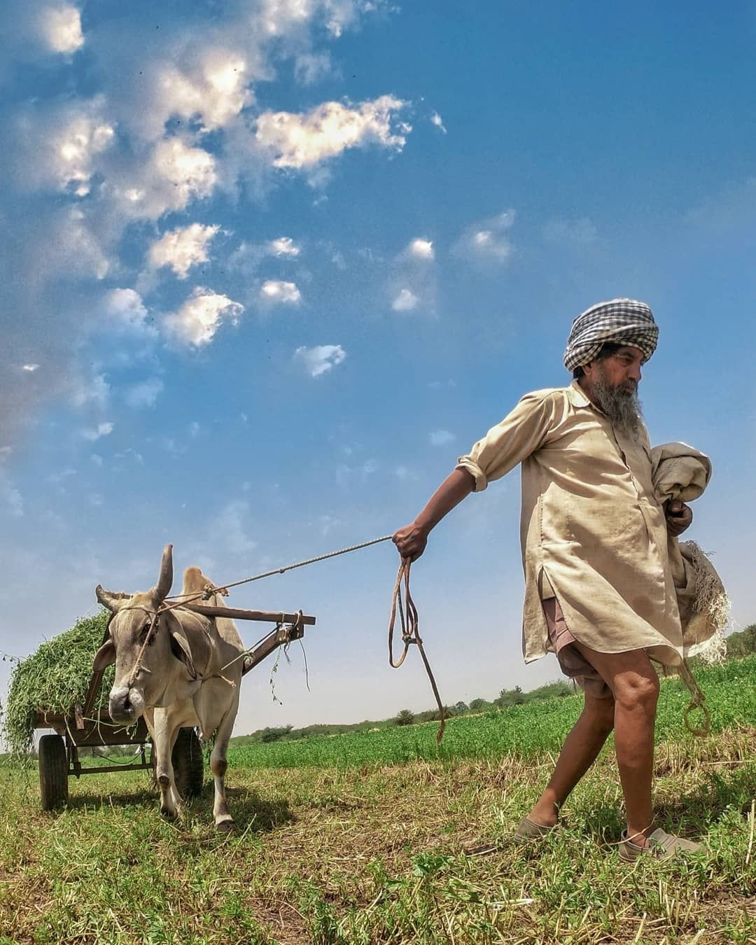 Photo of Punjab By Manish Kumar