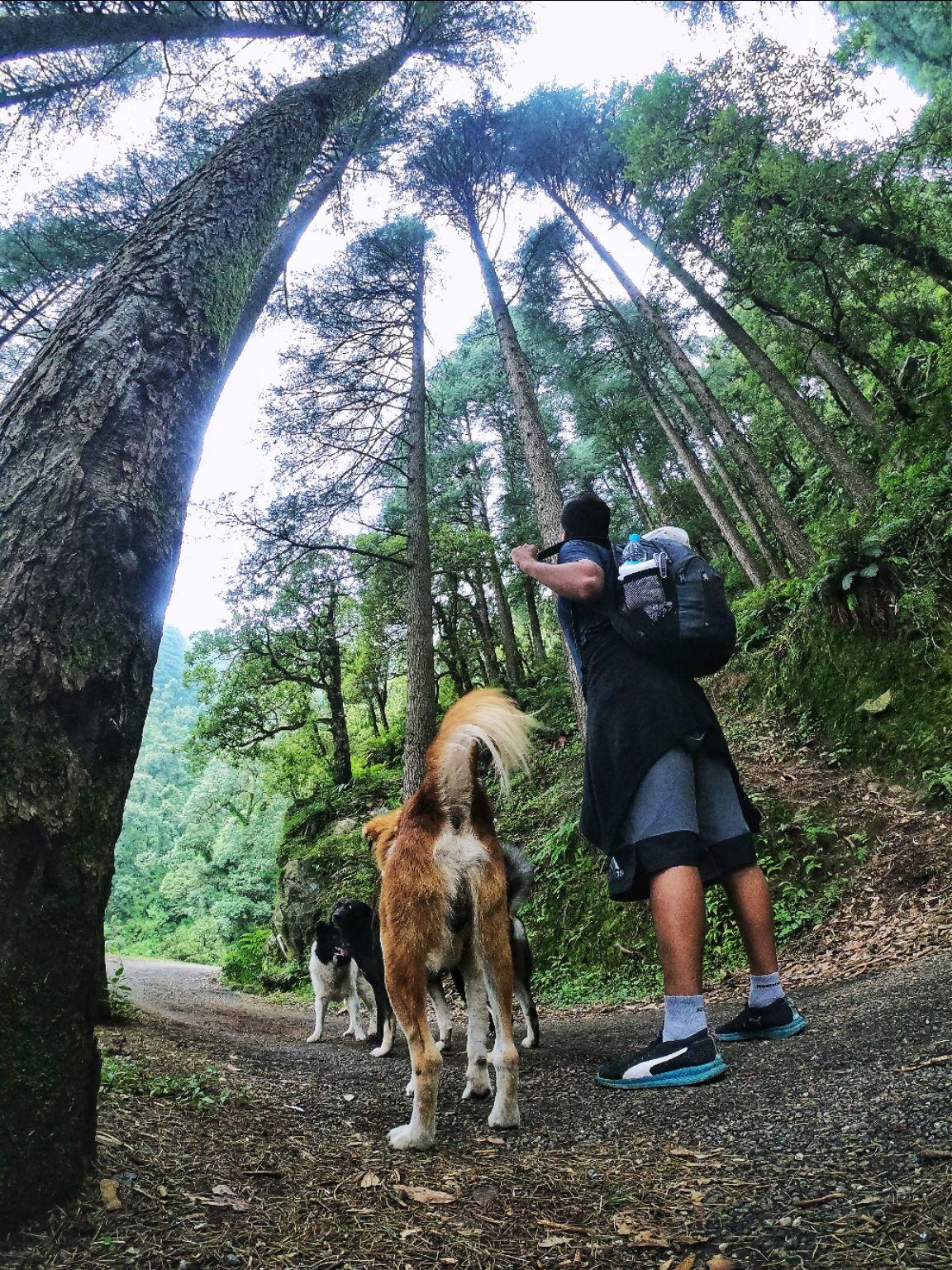 Photo of Kareri Lake Trek - Him Trail Adventures By khanabadosh