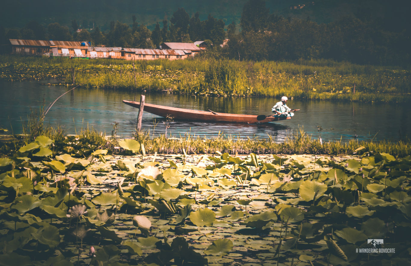 Photo of Dal Lake By Anoop Verma