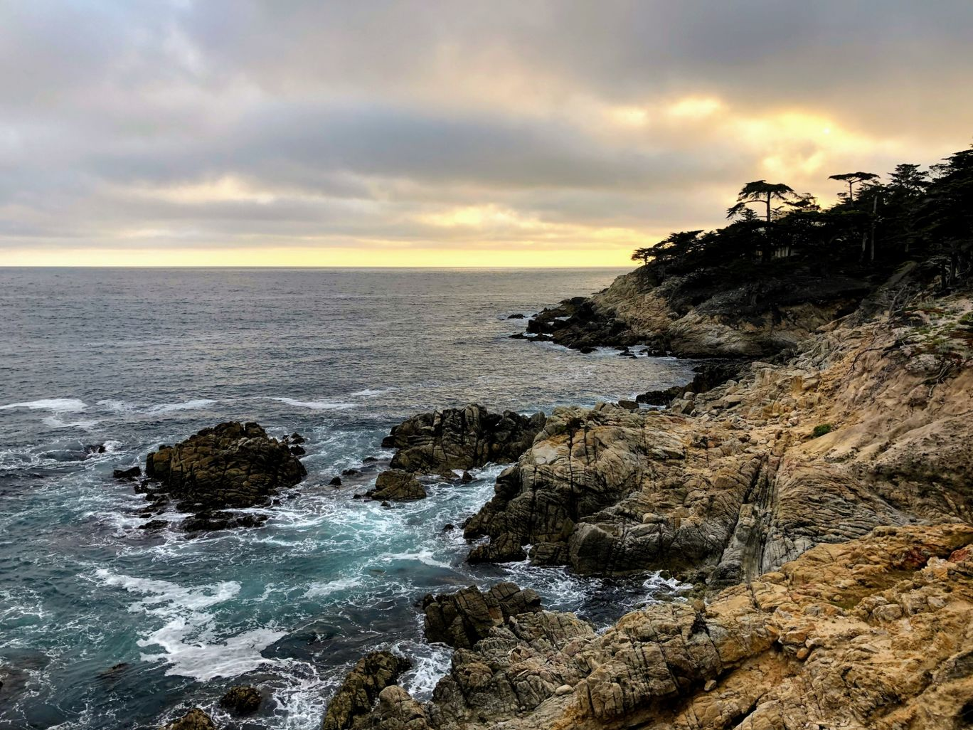 Photo of 17 Mile Drive By Sakshi Gopal