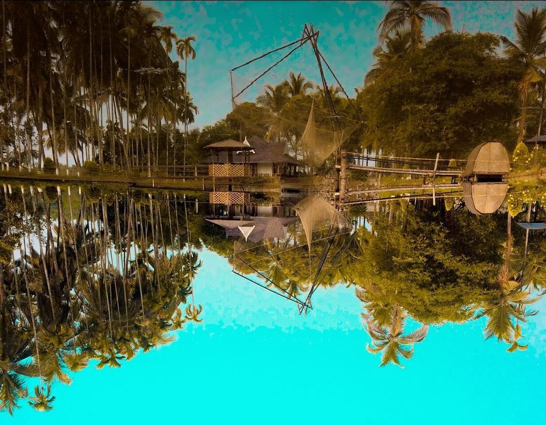 Photo of Mango County By Ajay Prakash Nair