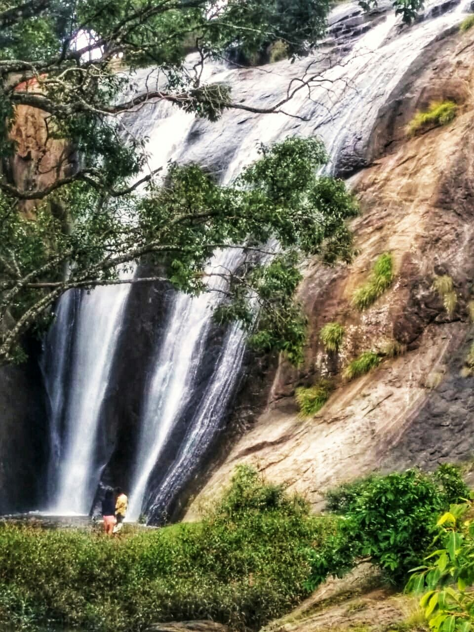 Photo of Anju Veedu water Falls (Elephant Valley water Falls) By Pinky Roy