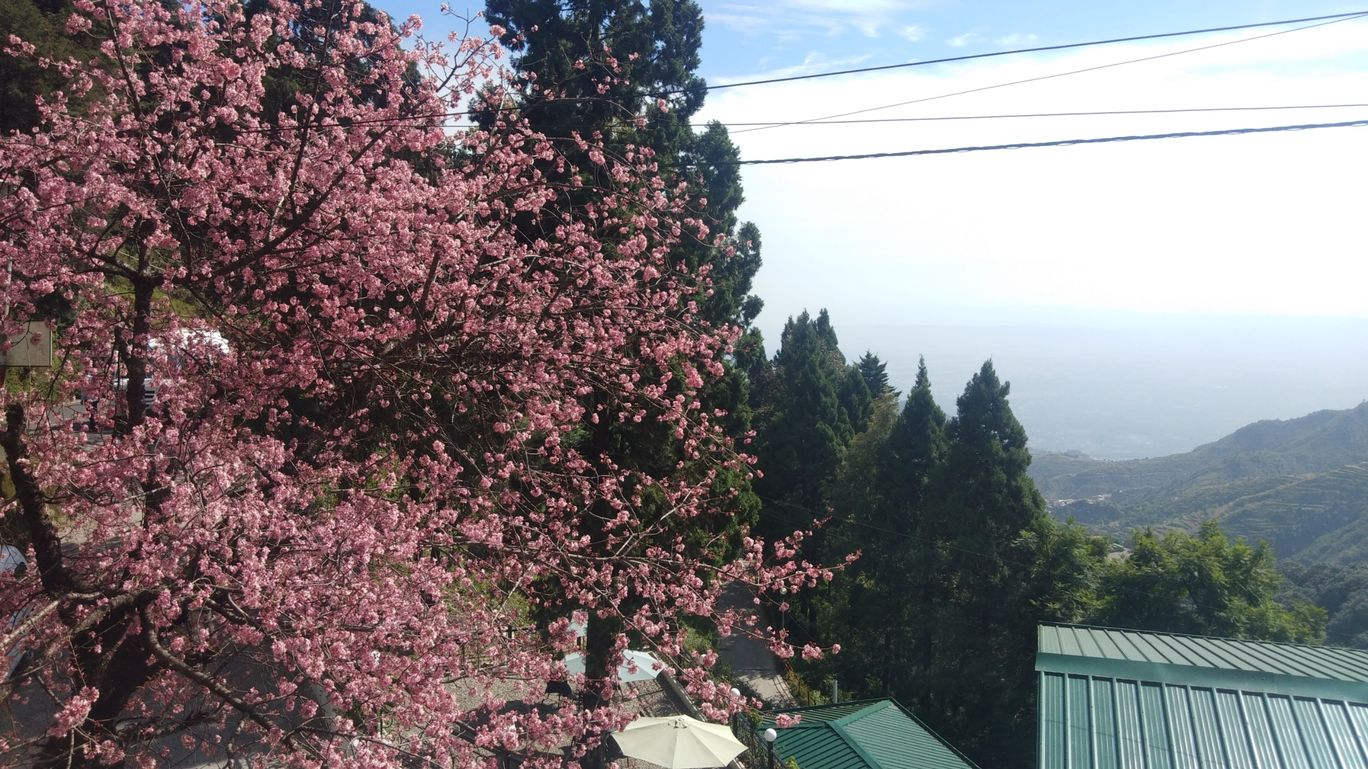 Photo of Mussoorie By Mayank Chauhan
