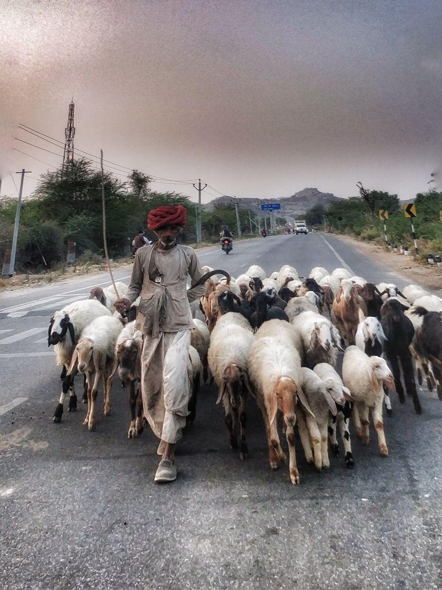Photo of Udaipur By Travelfashionandme Tfm