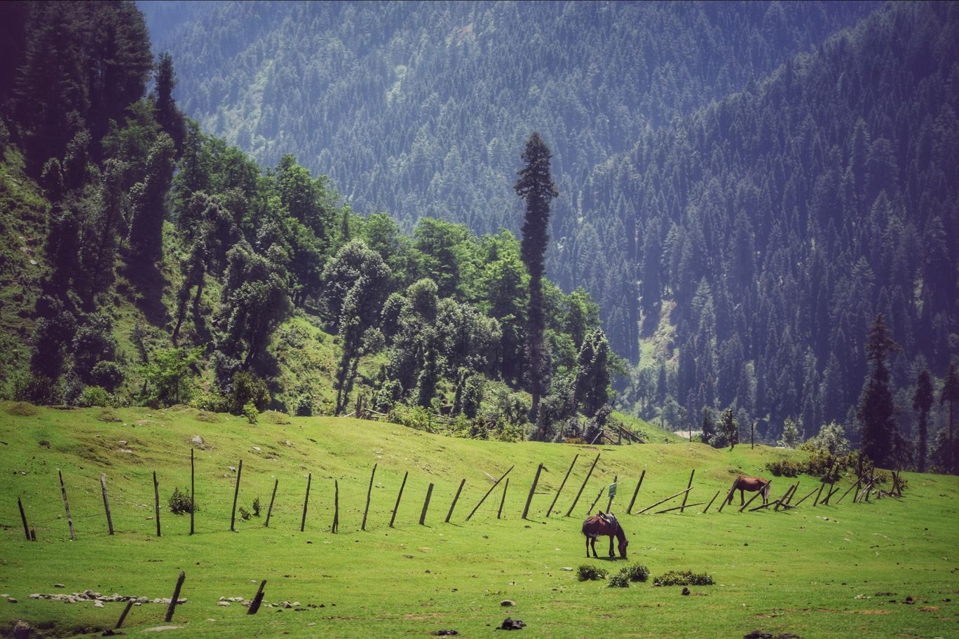 Photo of Pahalgam By Owais Yaqub