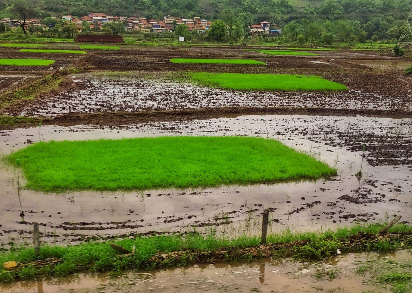 Photo of Ratnagiri By Shahil