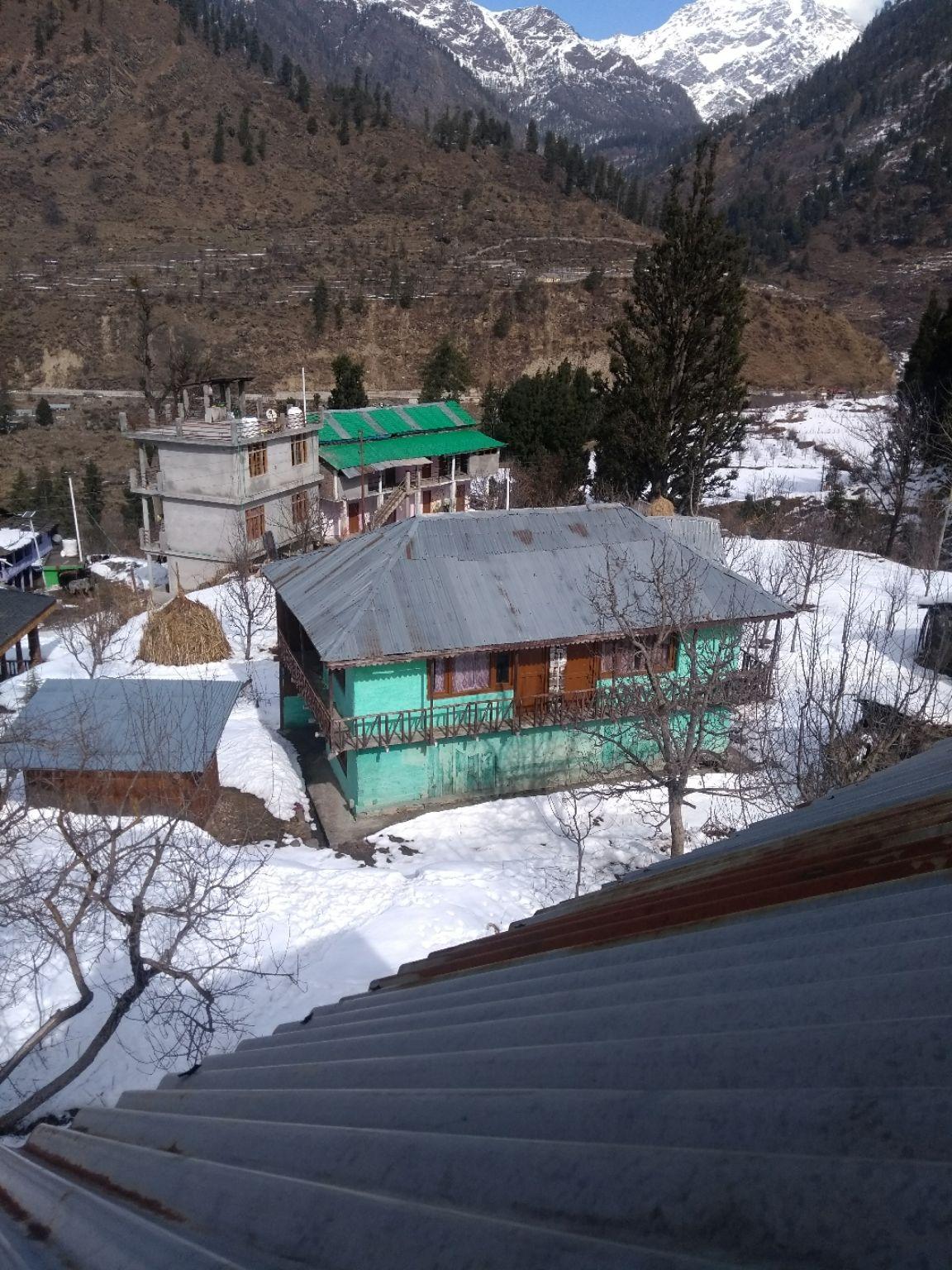 Photo of Pulga By Himanshu Jain