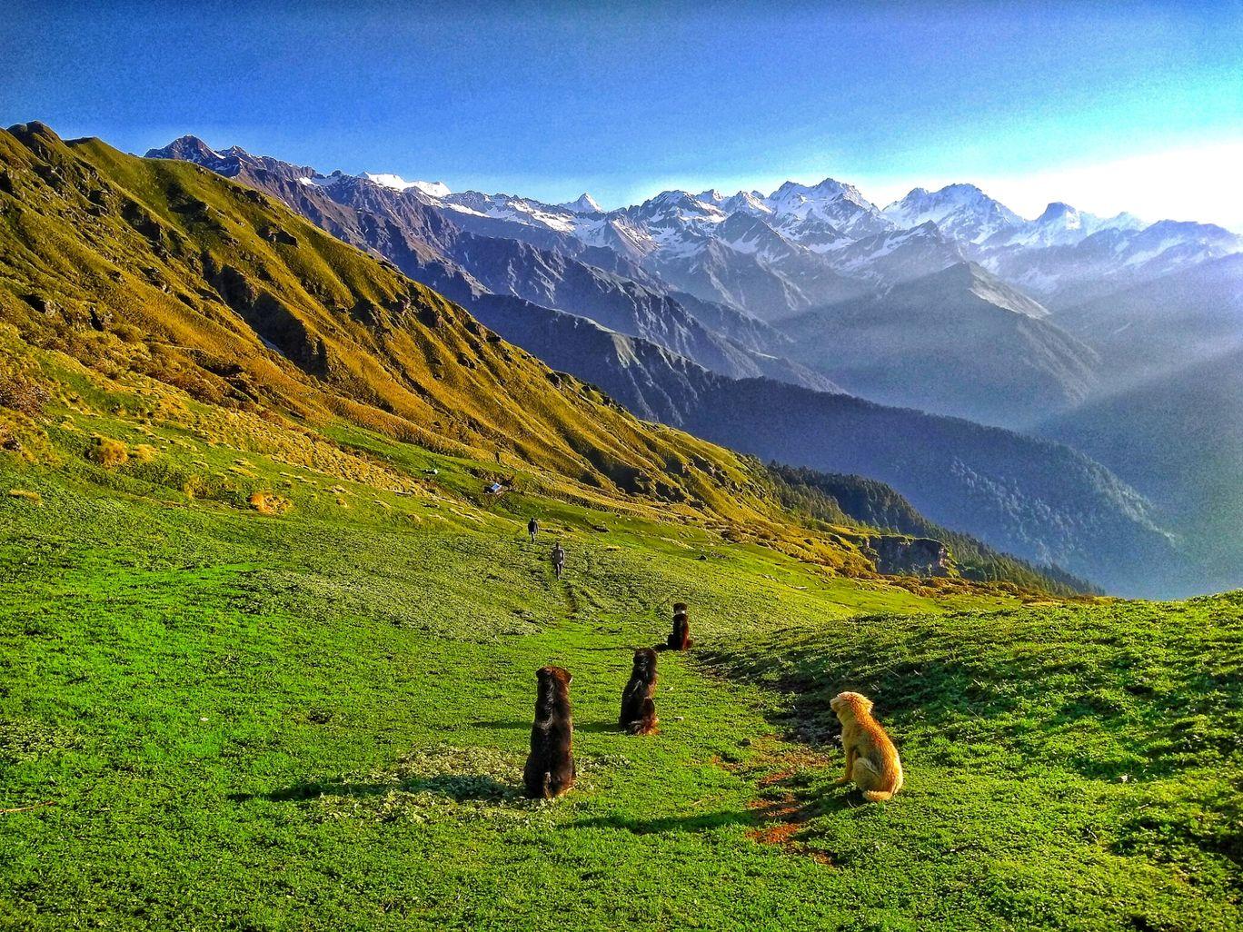 Photo of Uttarakhand By Prince Verma