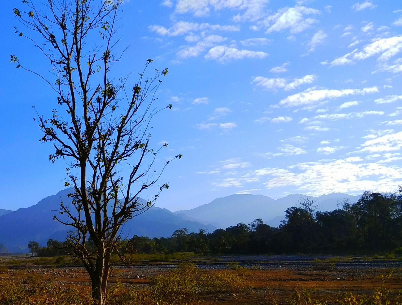 Photo of Jim Corbett National Park By Nikita Manisha Shrimant Thorat