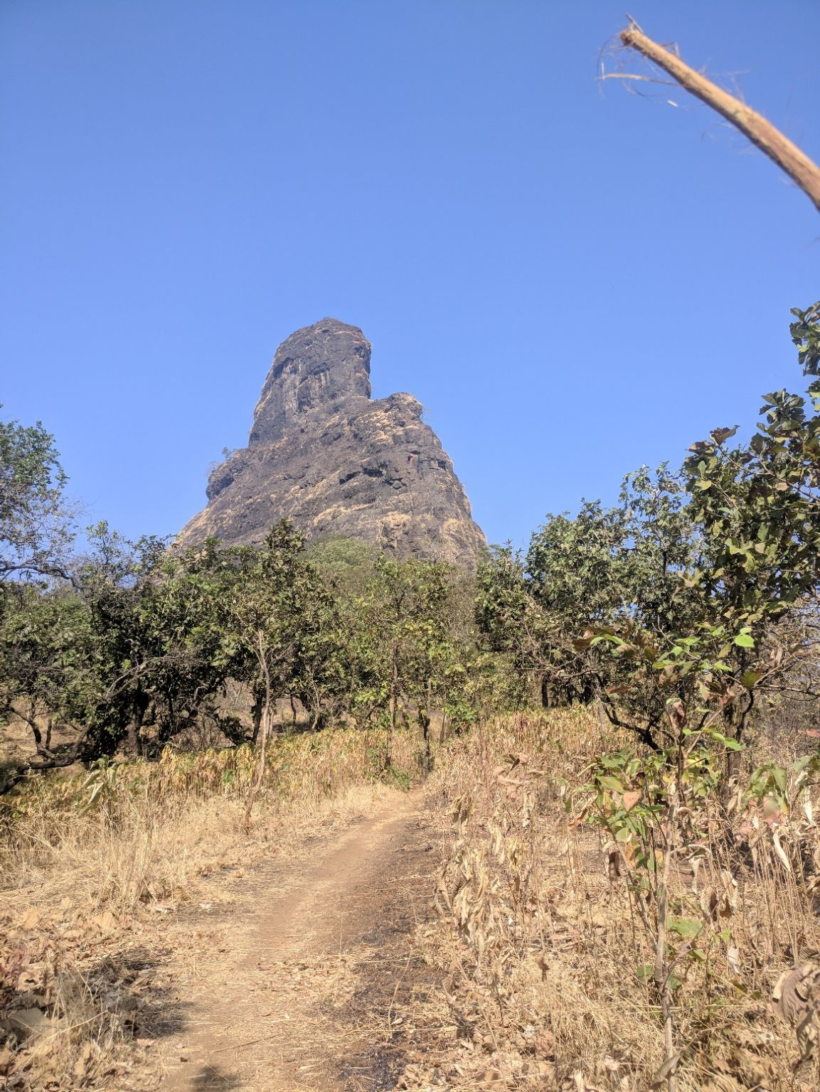 Photo of Gorakhgad Fort By Narayan Ghadge