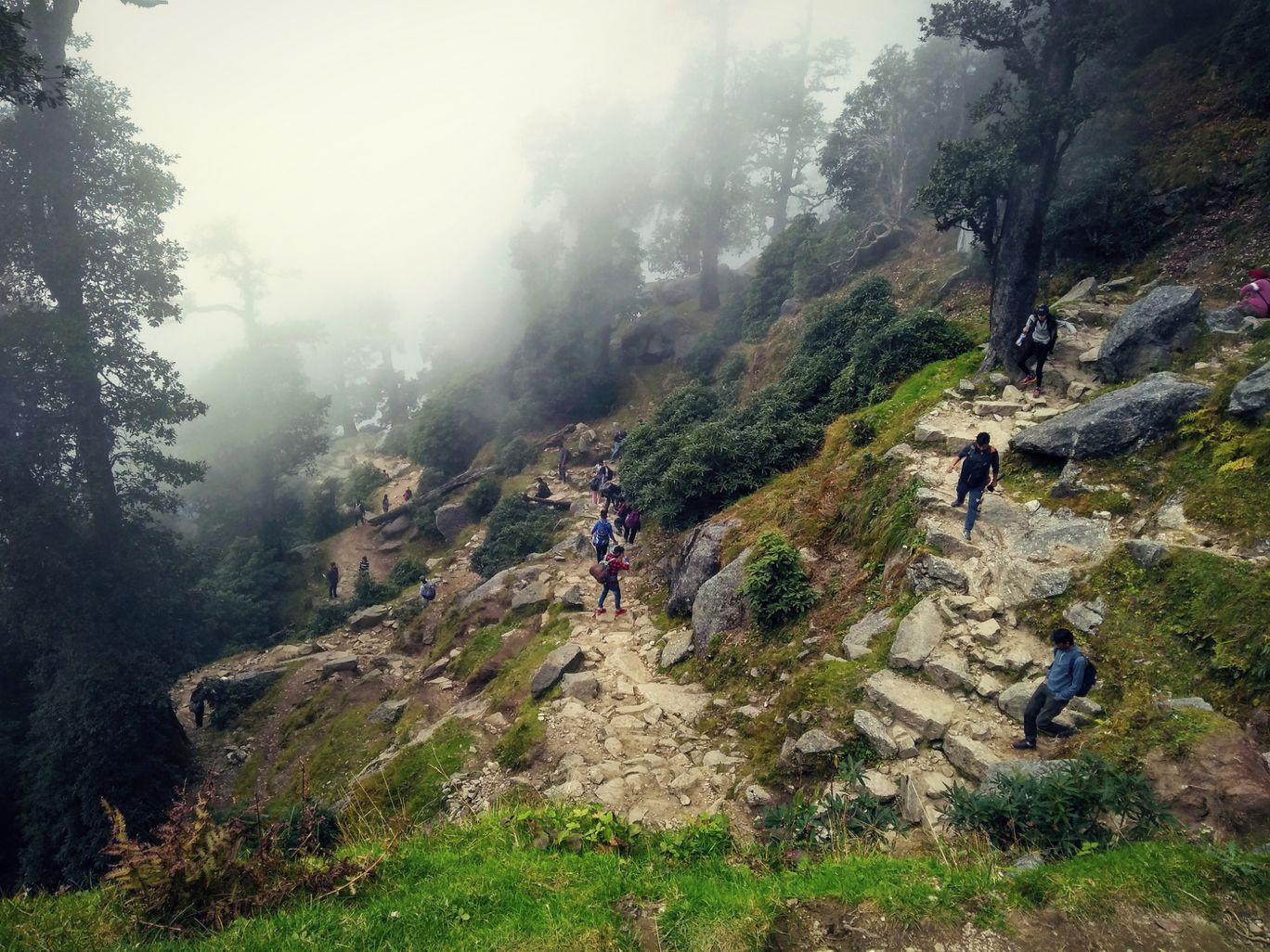 Photo of Triund Trek By abul abbas Azad