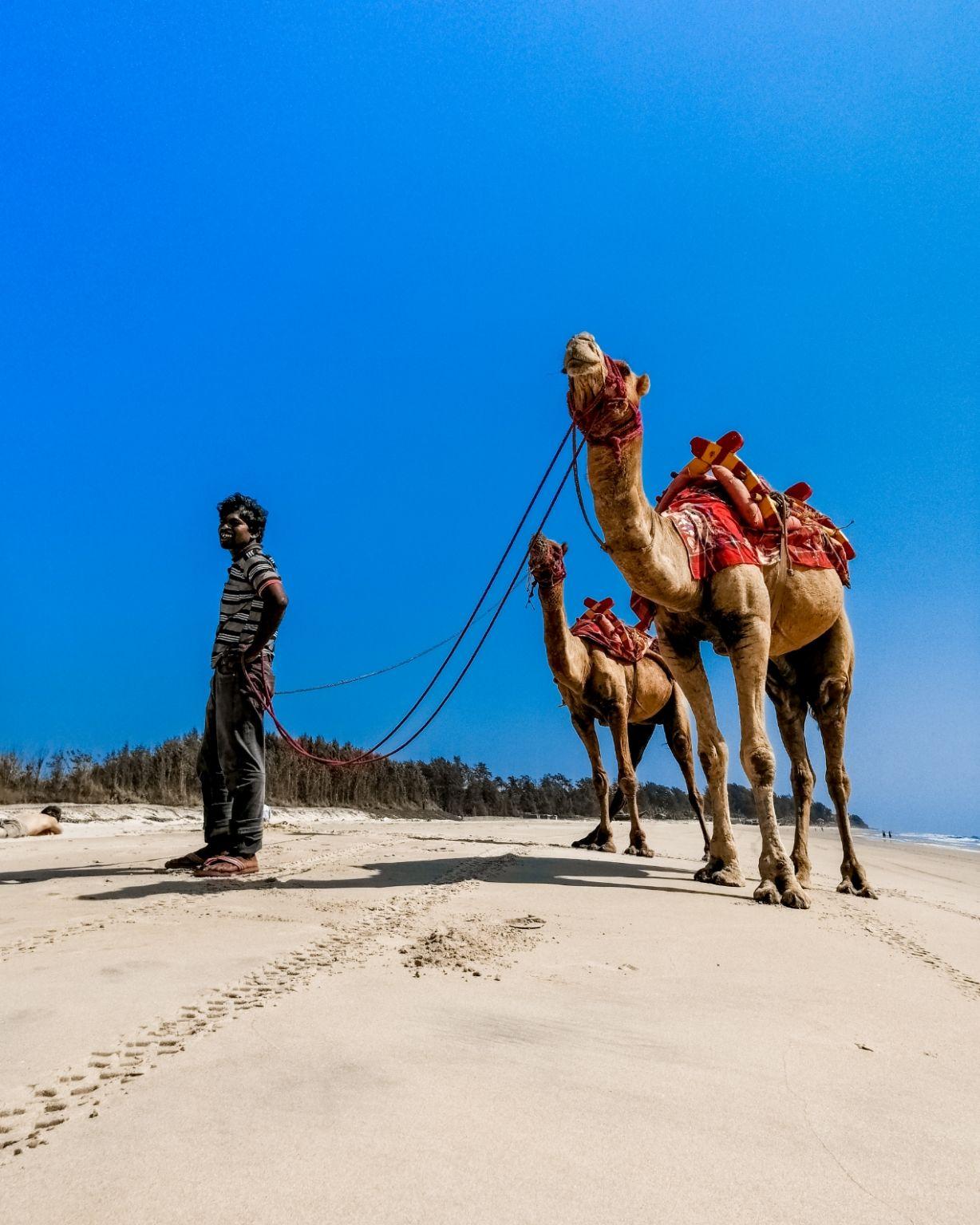 Photo of Tarkarli Beach By Jeet