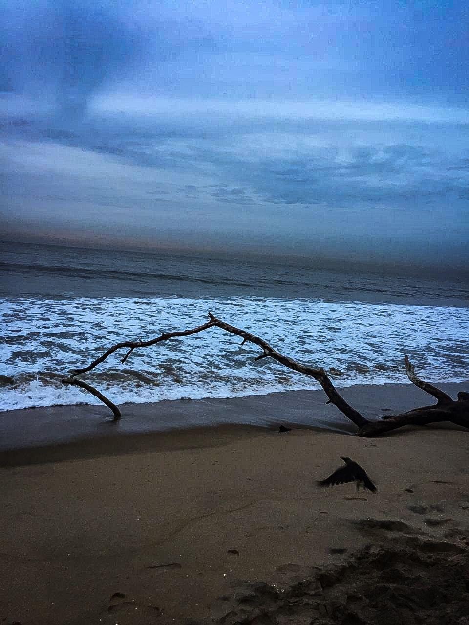 Photo of Auroville Beach By Ajay Chandran
