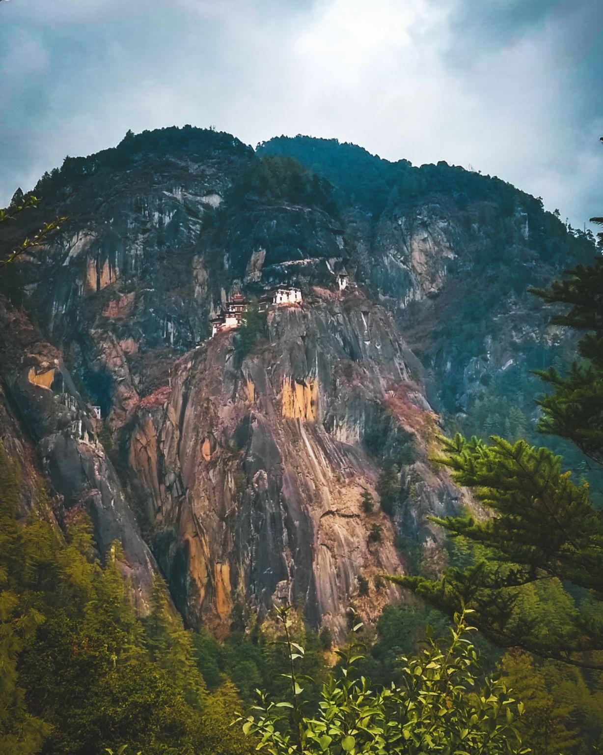 Photo of Tiger's Nest By sourav dash
