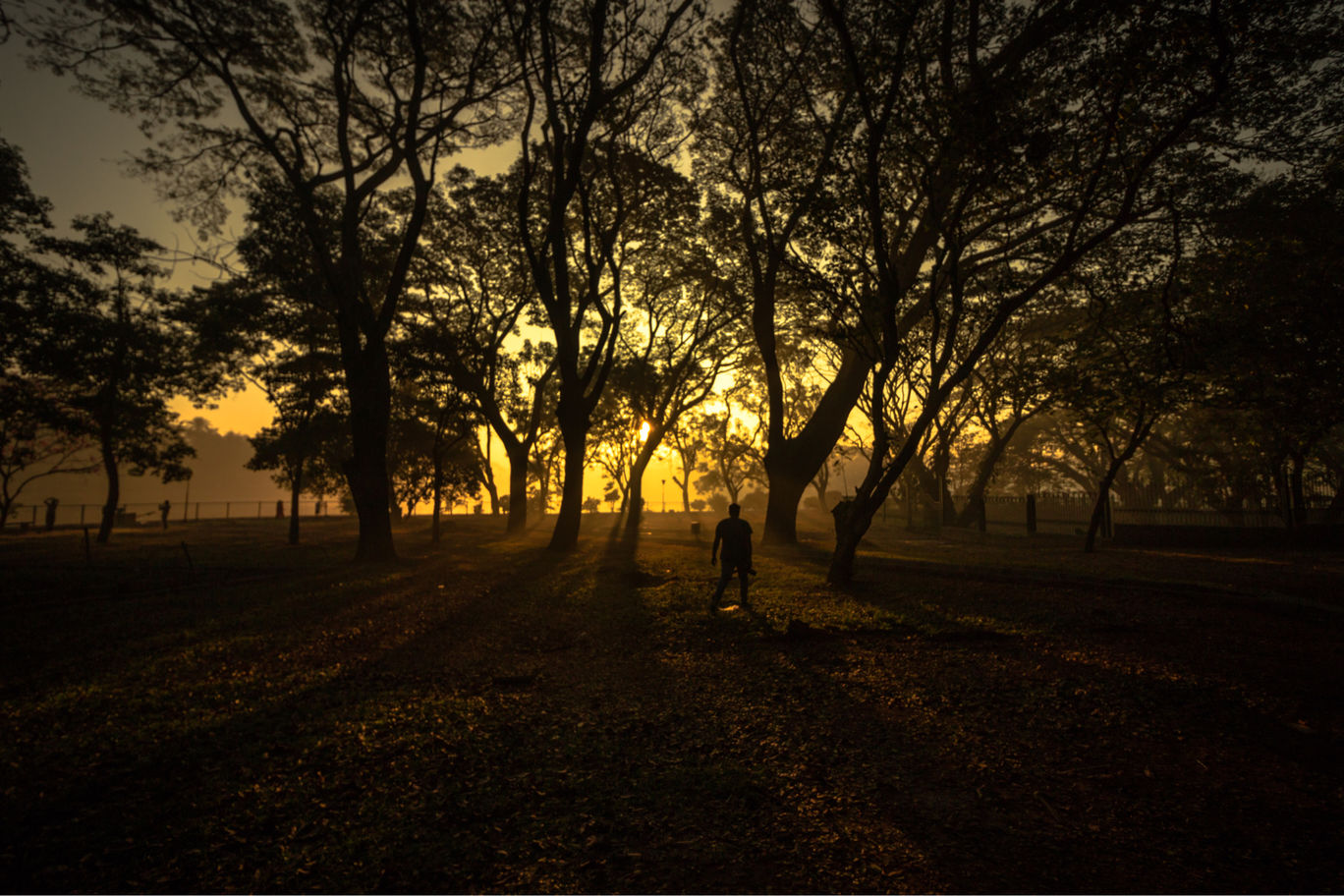 Photo of Exploring Bangalore's Lalbagh By Hawin Printo C
