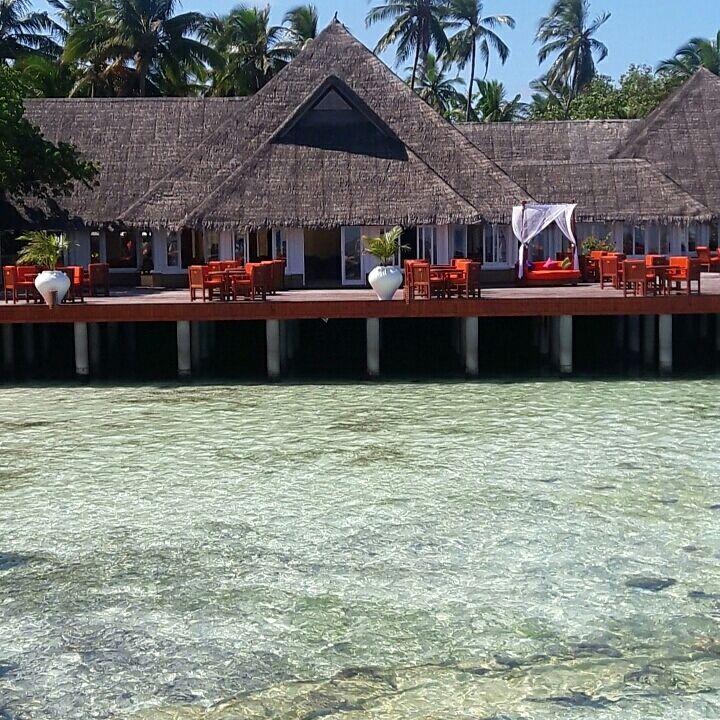 Photo of Maldives By Himja Singh
