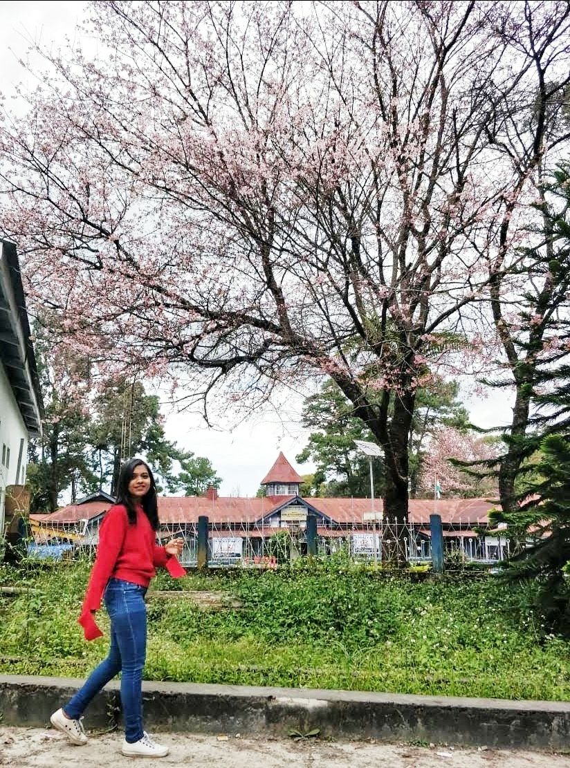 Photo of Shillong By Pragya Parimita