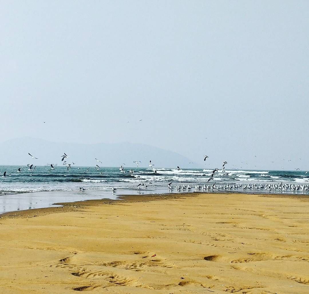 Photo of Devbagh Beach By Rakshitha