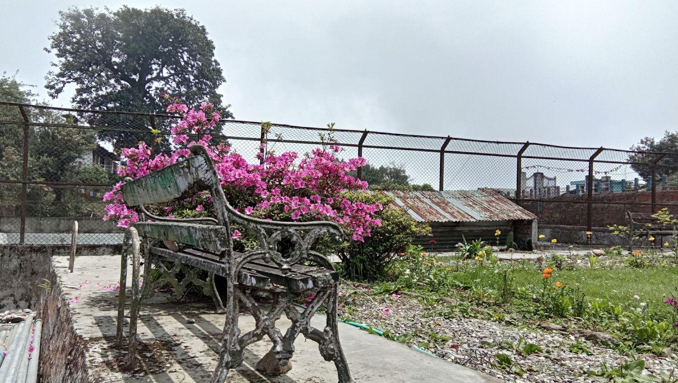 Photo of Jore Pokhri Wildlife Sanctuary By Audrija Choudhury