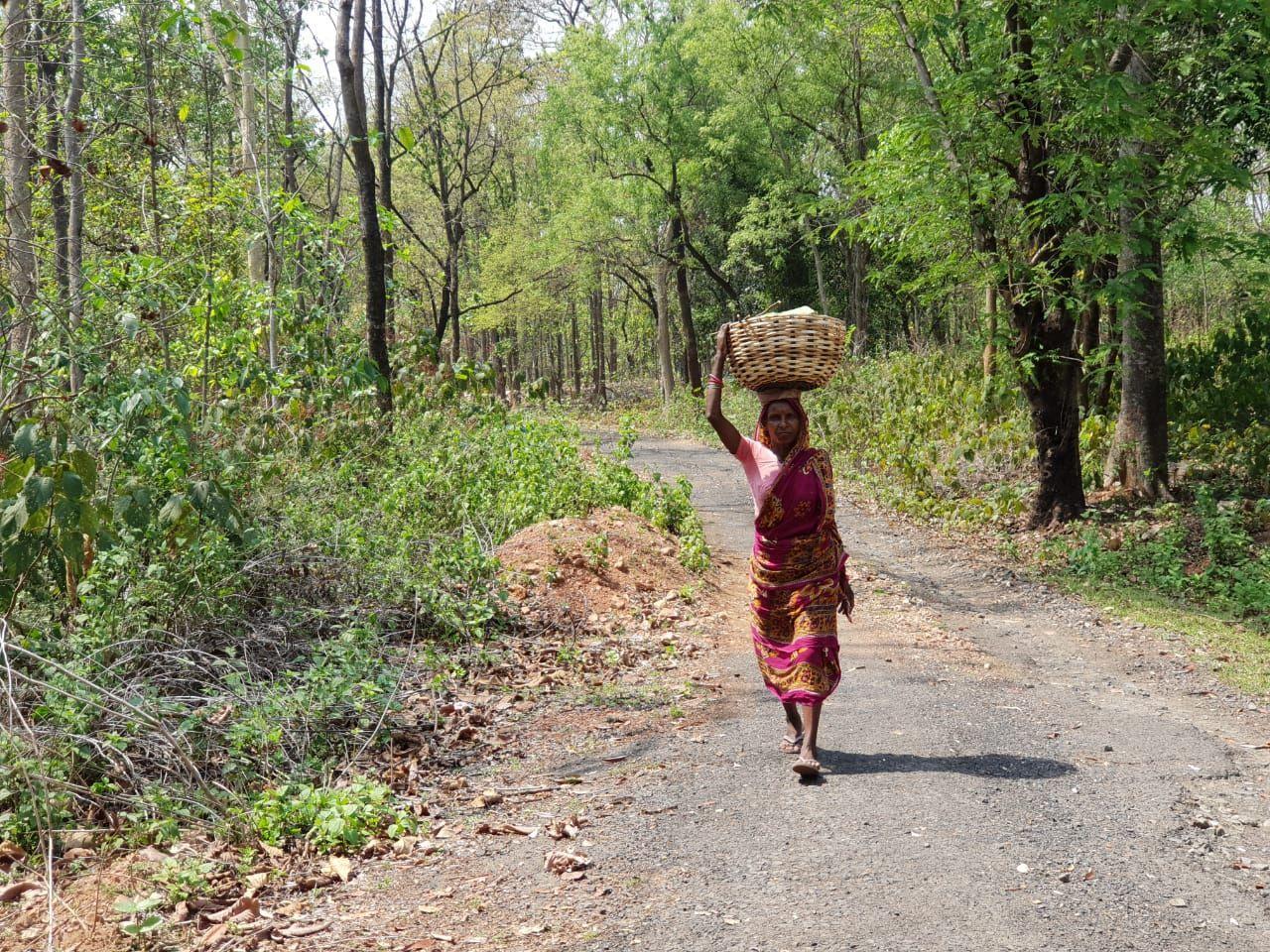 Photo of Mukutmanipur By Ranjan SenGupta