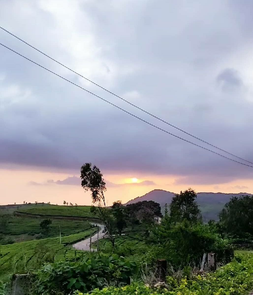 Photo of Vagamon By madhuri naidu