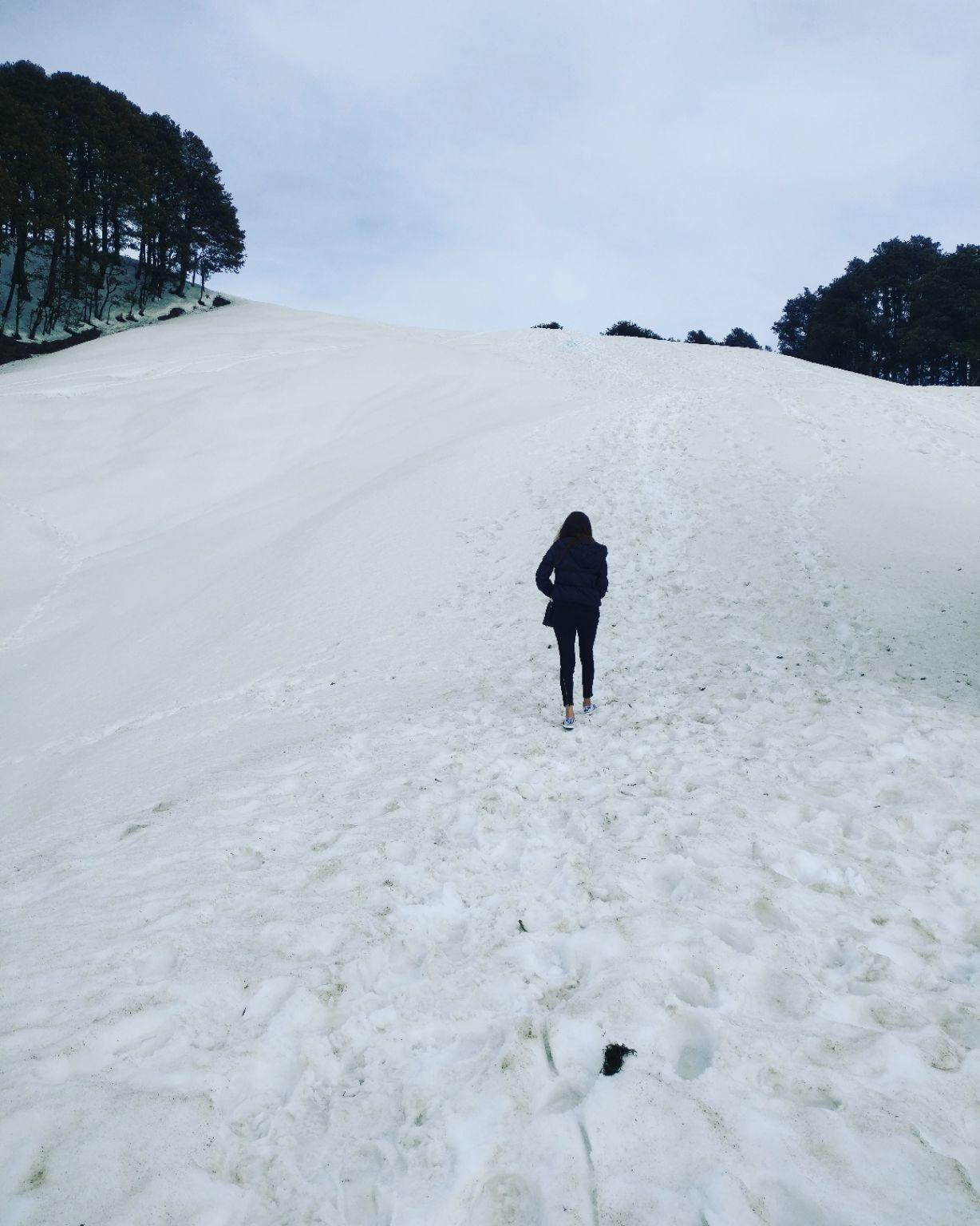 Photo of Jalori Pass By bhawna sain