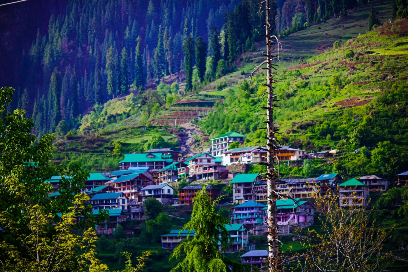 Photo of Solang Valley By Robin Singh Chaudhary