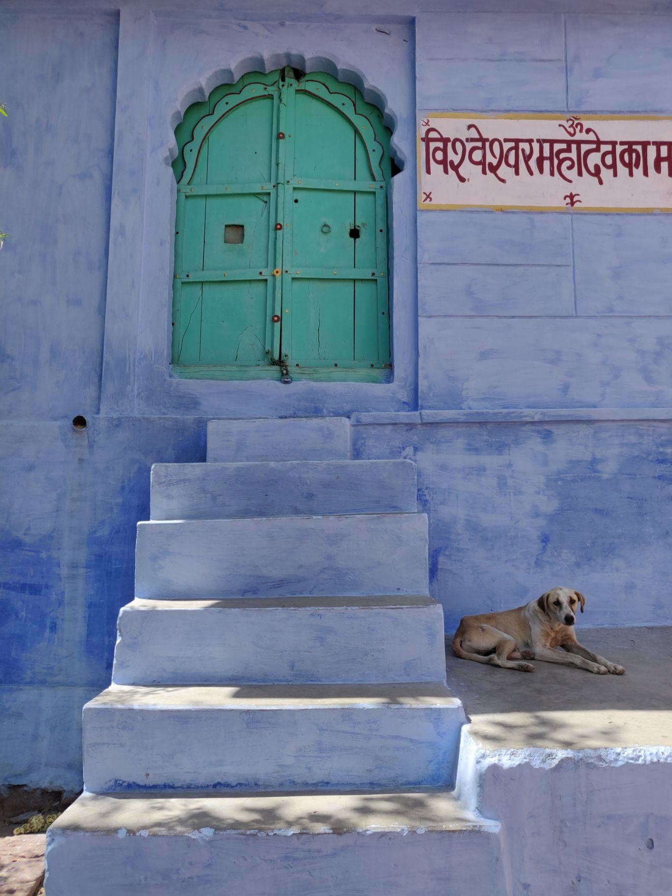 Photo of Jodhpur By Easy pathfinder