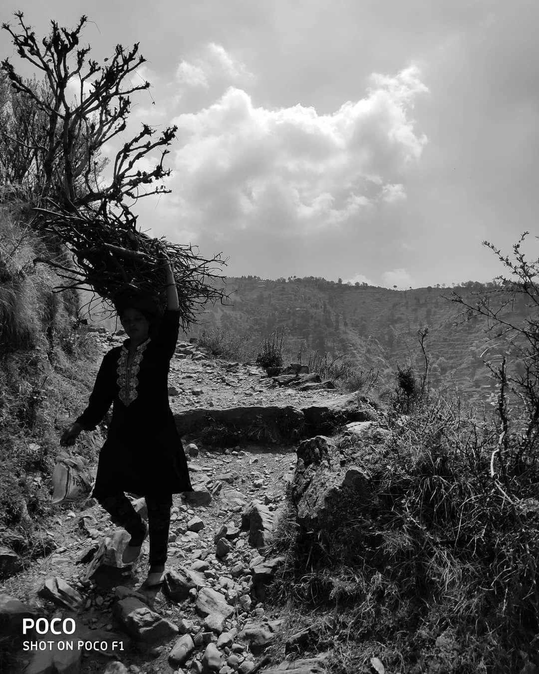 Photo of NagTibba Trekking By dhruv garg