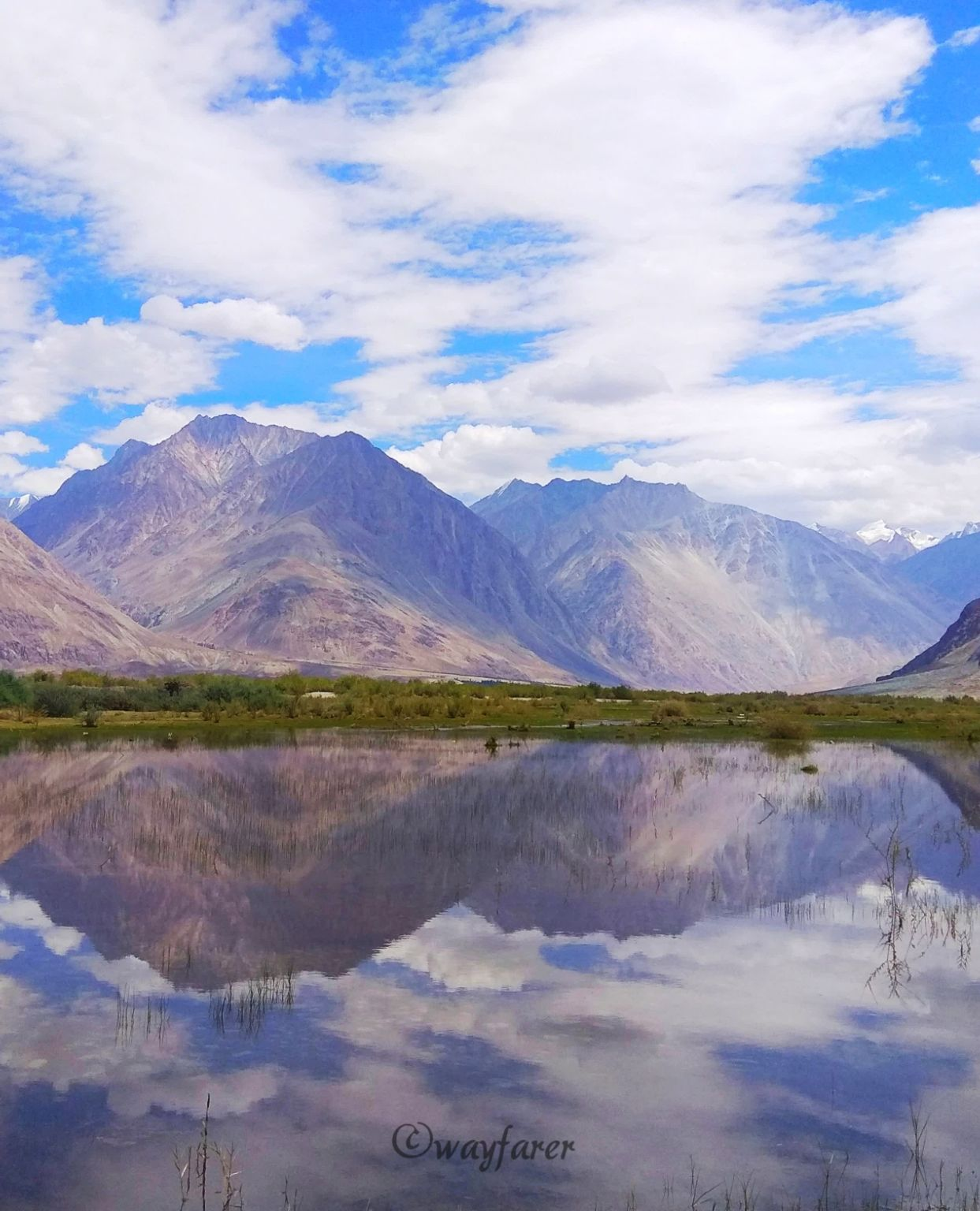 Photo of Nubra Valley By Anupama Kulkarni