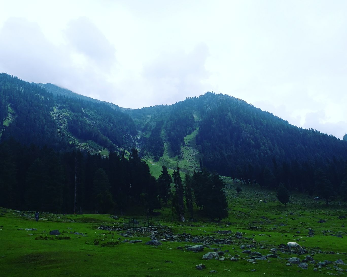 Photo of Jammu and Kashmir By Farhan Raina
