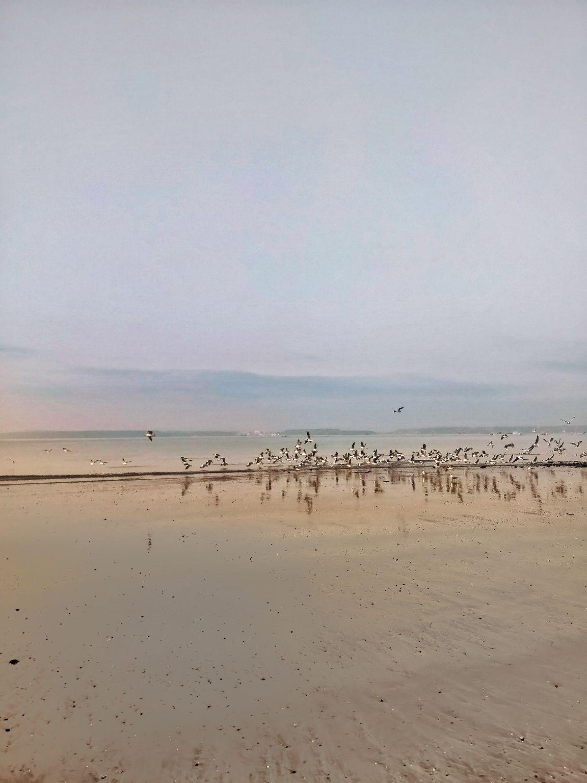 Photo of Goa By Richa Shah