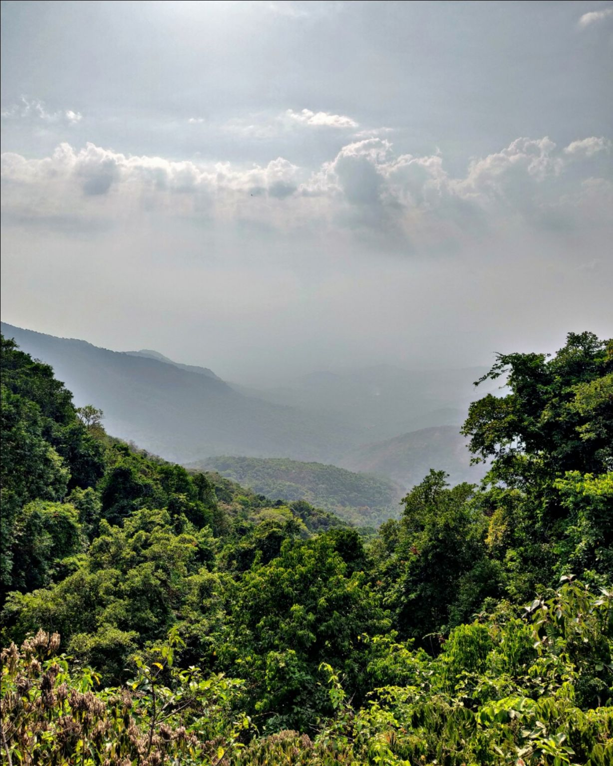 Photo of Amboli Ghat Waterfall By Mithuleswar Reddy