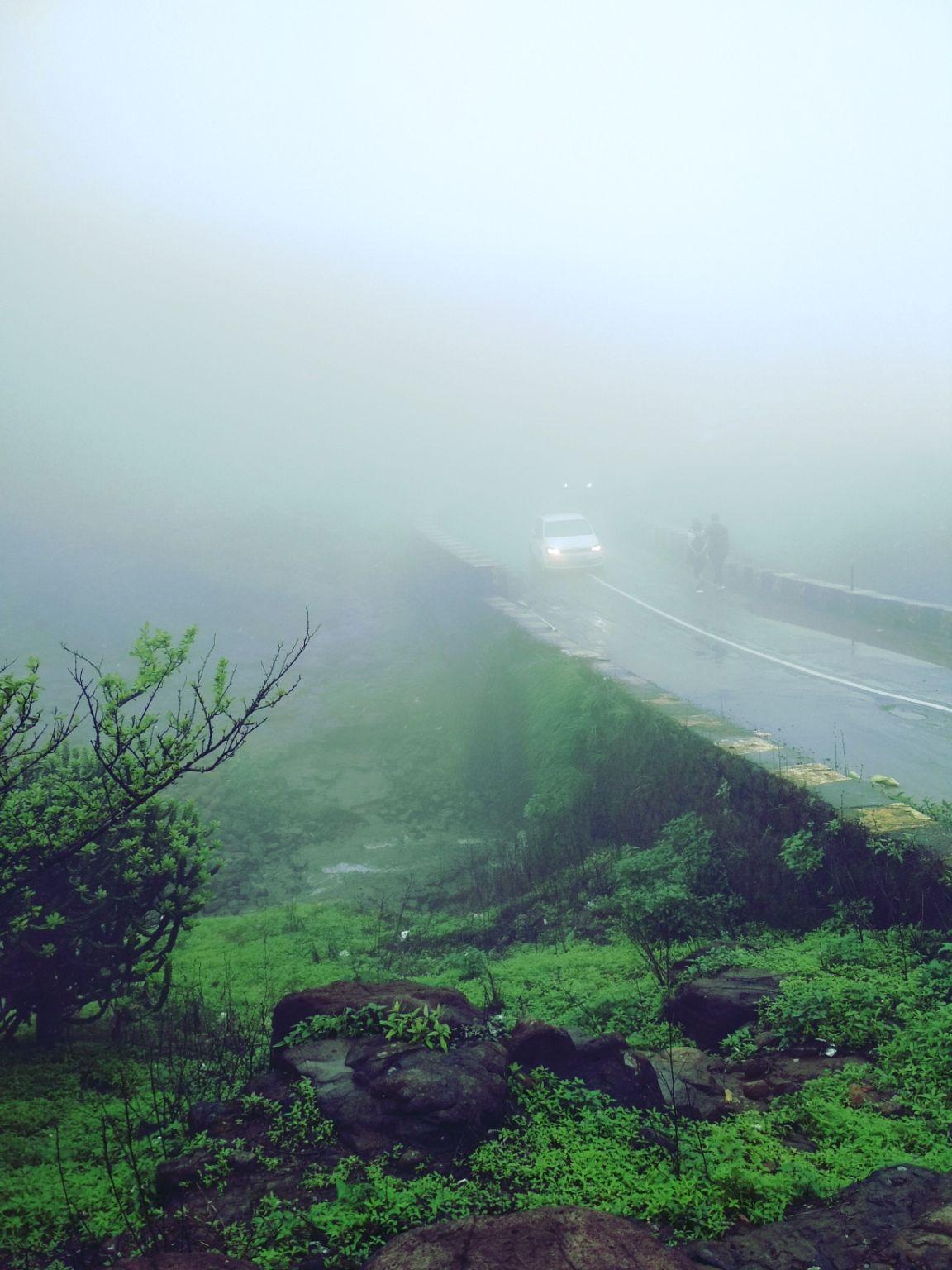 Photo of Tiger Point By Urvashi Giradkar