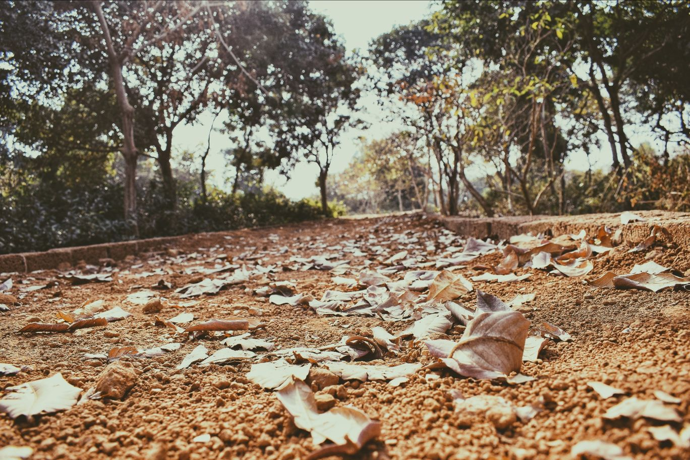 Photo of Lalitgiri By Debika