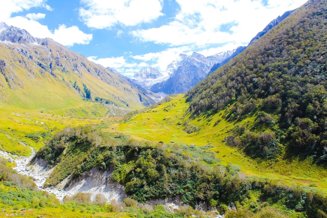 Photo of Valley of flowers National park By Jitinder Kumar