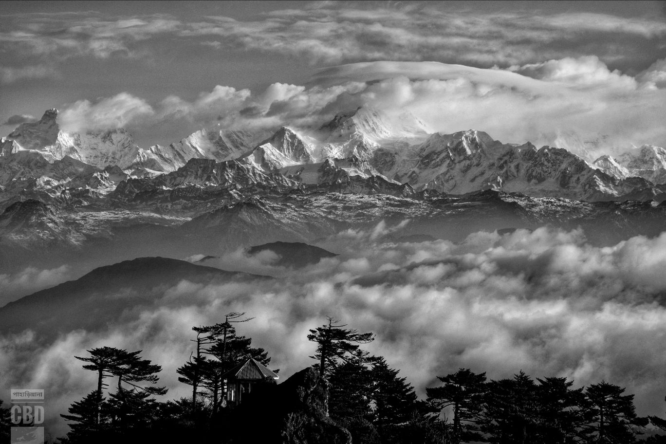 Photo of Sandakhphu By Dipjit Basak
