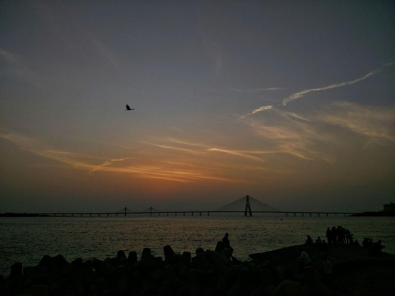 Photo of Shivaji Park By Anmol Sabbani