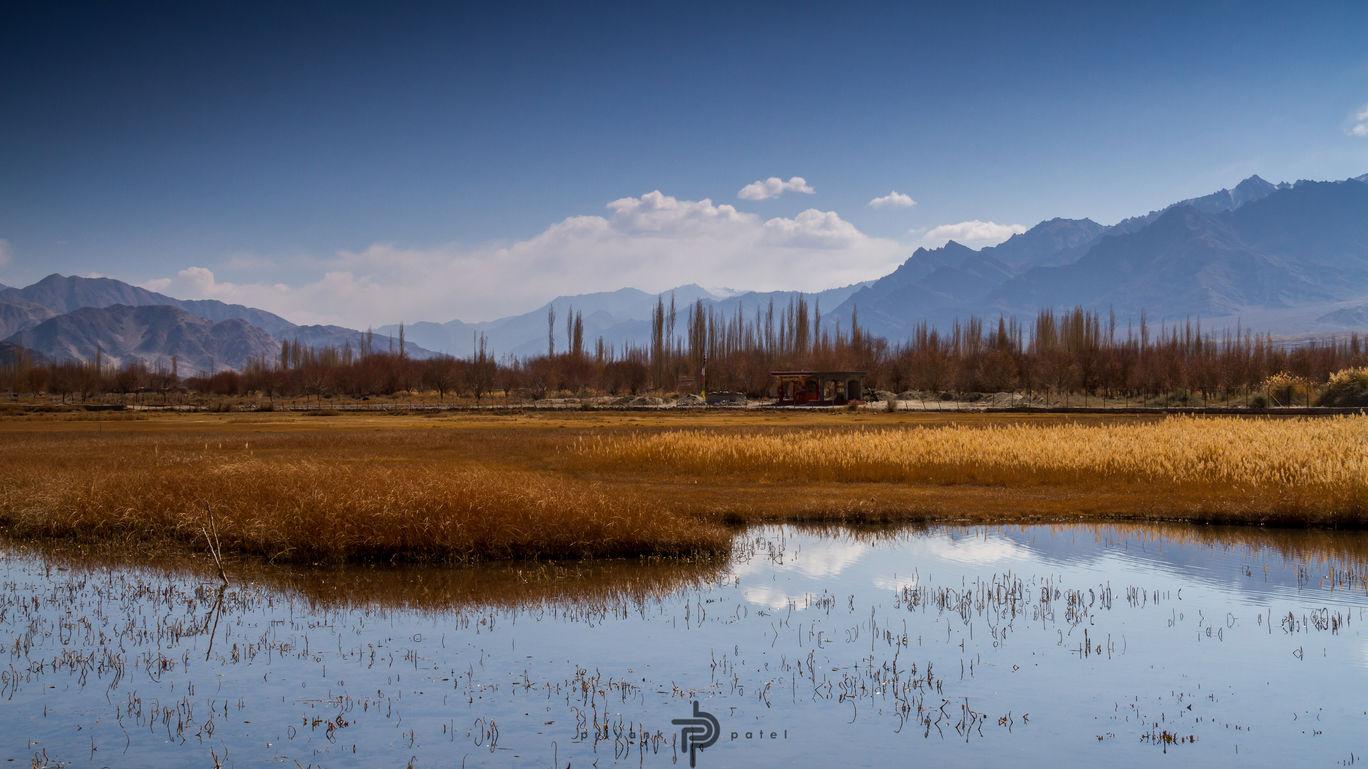 Photo of Leh By Priyank