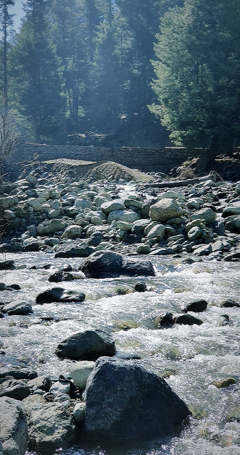 Photo of Jammu and Kashmir By Shalvi Dass