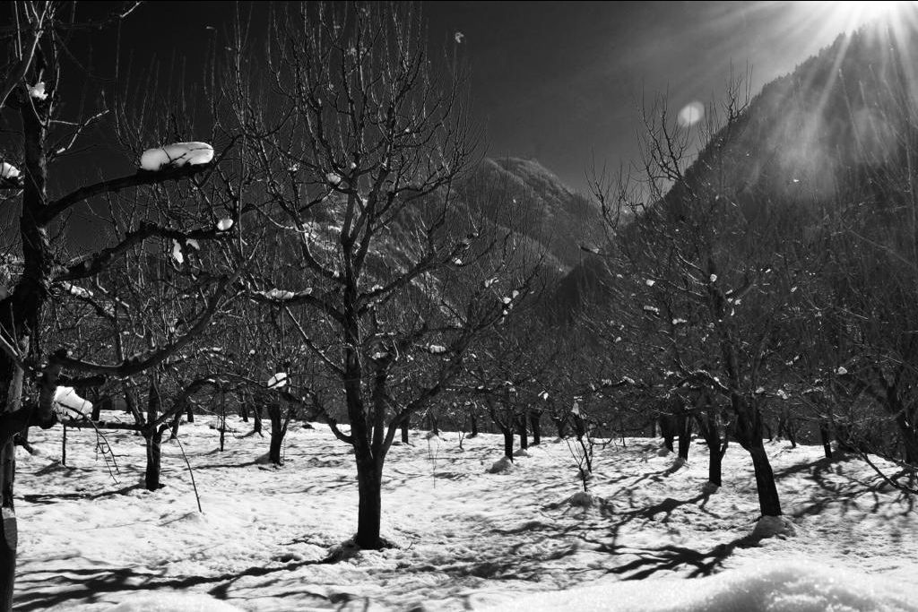 Photo of Himachal Pradesh By sunny rahaman