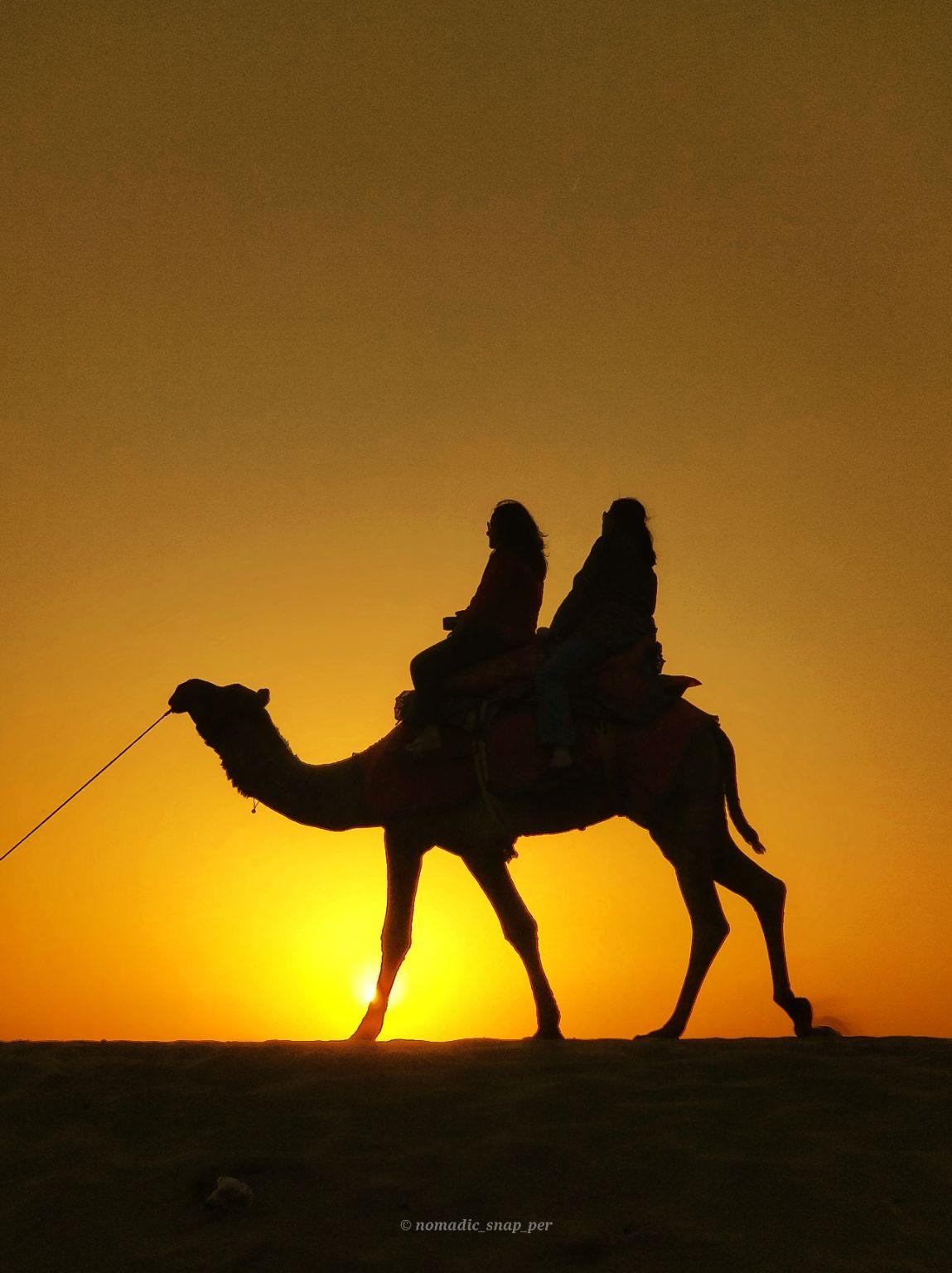 Photo of Jaisalmer By PRASAD S