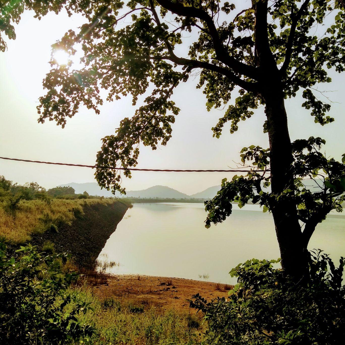 Photo of Pipartola By Bharat Ji Mehrotra