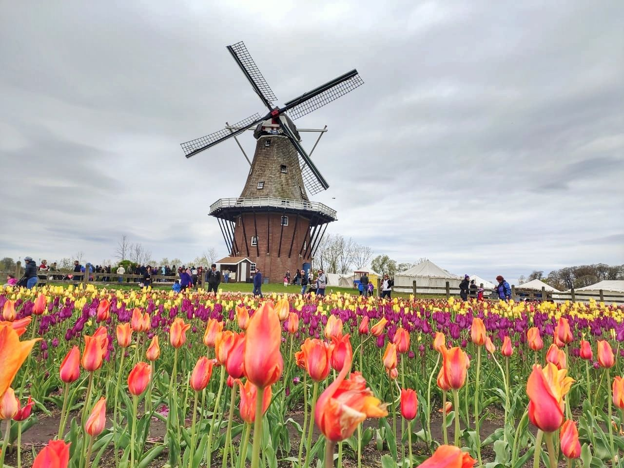 Photo of Holland By Two2Tango