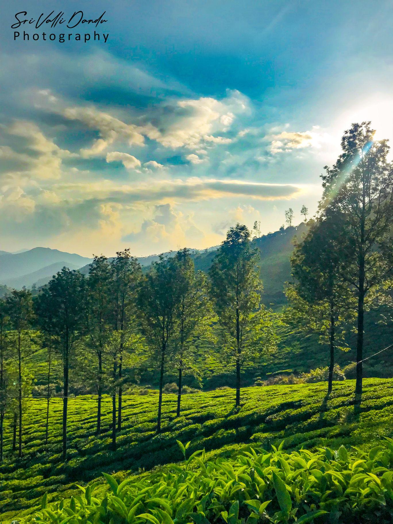 Photo of Kerala By Sri Valli