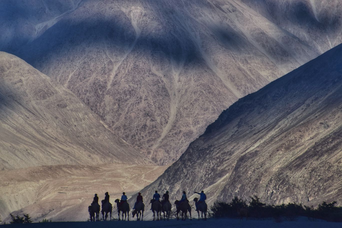 Photo of Nubra Valley By Abhigya Shrivastava