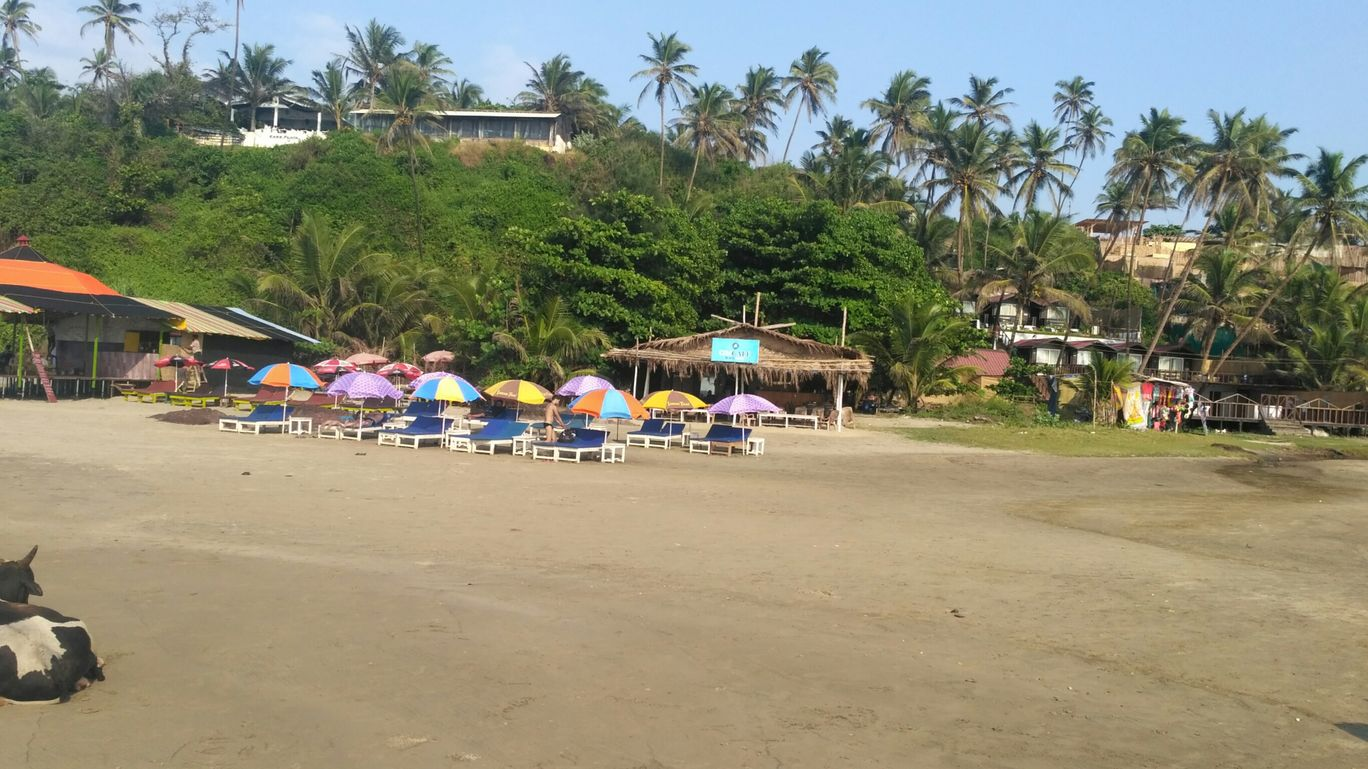 Photo of North Goa By Nirav Dhimmar