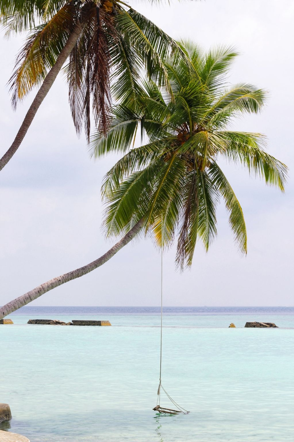 Photo of Maldive Islands By 1TeaspoonLove ®