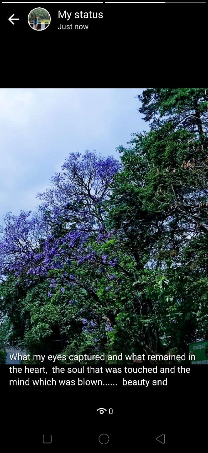 Photo of Cherrapunjee By Saroja Rai