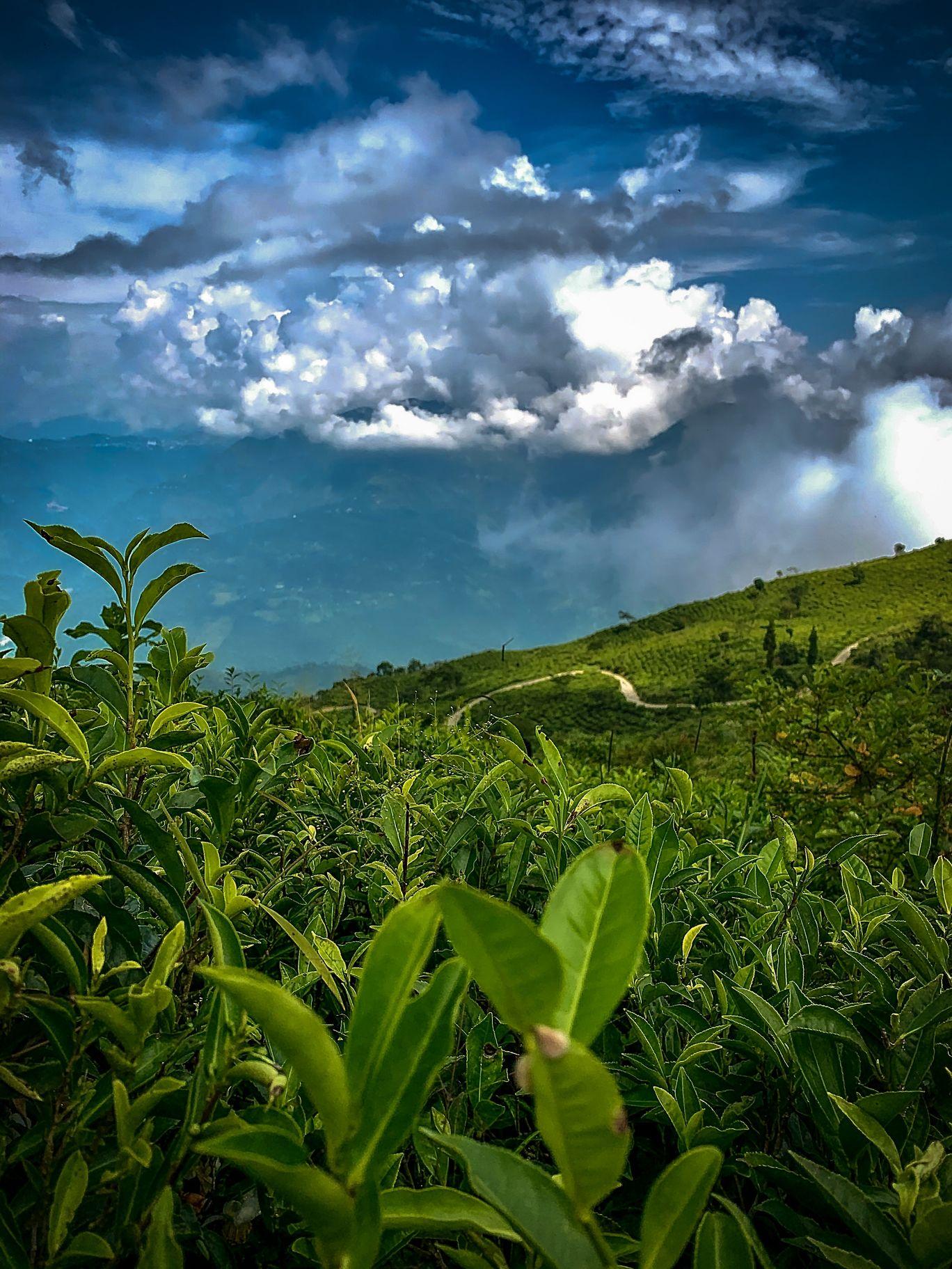 Photo of Tinchuley Gumbadara Viewpoint By Devika Mitra